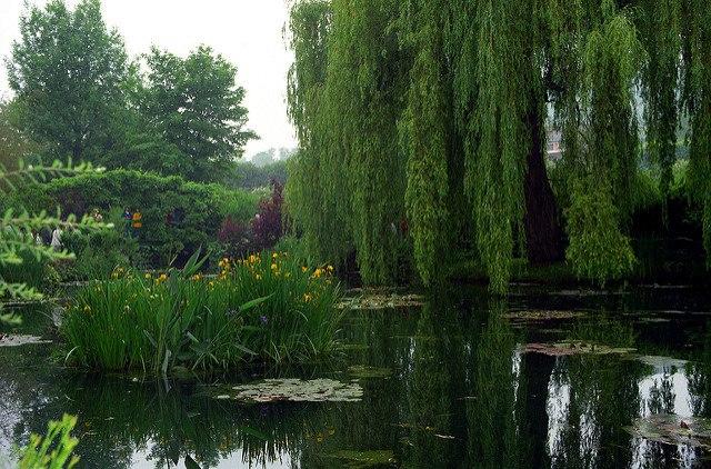 Monet's house&garden2